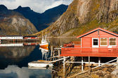 Typical red rorbu huts with sod roof in town of Reine on Lofoten islands in Norway — Стоковое фото