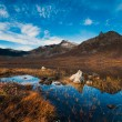 Nature of northern Norway — Stock Photo #38602559