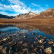 Stock Photo: Nature of northern Norway
