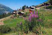 La Sage. Switzerland..Valais — Stock Photo