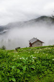 La Sage. Switzerland.Valais — Stock Photo