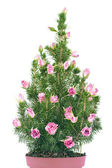 Christmas tree with roses flowers — Stock Photo