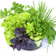 Basil, lettuce, parsley and green onion in glass bowl isolated — Stock Photo #34039141