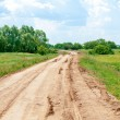 Country road in summer — Stock Photo