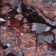 Druse of crystals garnet — Stock Photo