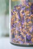 Dry flowers in the glass bottle. — Foto de Stock