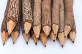 Bunch of pencils stylized two branch. isolated on the white — Stock Photo