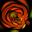 Fractal red rose flower illustration on black background — Stock Photo