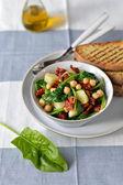 菠菜和鹰嘴豆的沙拉. — 图库照片