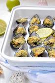 Gratin von Muscheln, Tiefenschärfe. italienische Küche. — Stockfoto