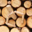 Stock Photo: Wood doll