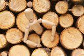 Wood doll — Stock Photo