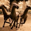Thre horses from light garlands — Stock Photo