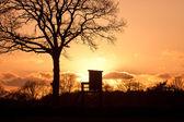 Sunset with hunter seat — Stok fotoğraf