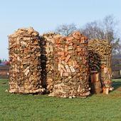 Wood piles — Stock Photo