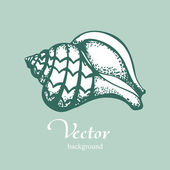 Vintage shell on blue background — Vector de stock