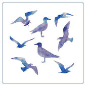 Seagulls silhouettes — Stock Vector
