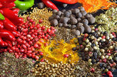 Colorful spices — Foto Stock