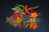Colorful spices on black background — Stock Photo
