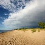 Baltic sea shore. Riga, Latvia — Zdjęcie stockowe
