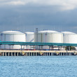 Large oil fuel tanks in the port of Ventspils — Stock Photo #32821583