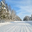 Road in a countryside in sunny winter day. Classic snow covered winter landscape — Foto Stock