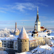 Tallinn city. Estonia. Snow on trees in winter — Stok fotoğraf