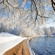 River bank in winter — Stock Photo #32822931