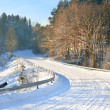 Road in a countryside in sunny winter day — Stock Photo