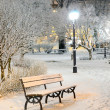 Snow on trees in Riga park by night — Stock Photo