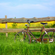 Old vintage brown bicycle near the fence of a flower field — Stock Photo #32823619