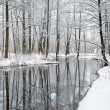 Foresr river in winter — Stock Photo #32824517