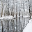 Stockfoto: Foresr river in winter