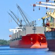 Cargo ships loading in cargo terminal — Stock Photo
