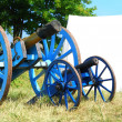 Cannon from napoleonic war times — 图库照片