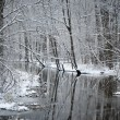 Foto Stock: Foresr river in winter