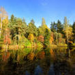 River and forest reflection scene in Fall — Stock Photo