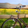 Old vintage brown bicycle near the fence of a flower field — Stock Photo