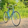 Stock Photo: Old vintage blue bicycle on road in rural area