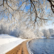 River bank in winter — Stock Photo