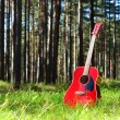 Guitar acoustic in the grass in the forest — Stock Photo