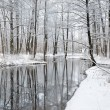 Foresr river in winter — Stock fotografie #32829299