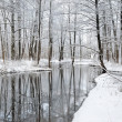 foresr river i vinter — Stockfoto