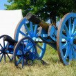 Cannon from napoleonic war times. Operational reproduction — Stock Photo