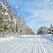 Road in a countryside in sunny winter day. Classic snow covered — Stock Photo #32829383