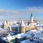 Tallinn city. Estonia. Snow on trees in winter, panoramic view — Stock Photo #32829927