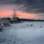 Winter landscape with hoar-frost at the sunrise — Stock Photo