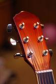 吉他启闭机 — 图库照片