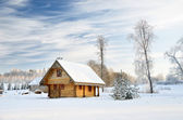 Traditional countryside house in winter — Stock Photo