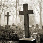 Croix dans le brouillard au cimetière — Photo